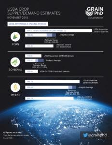 World USDA Report