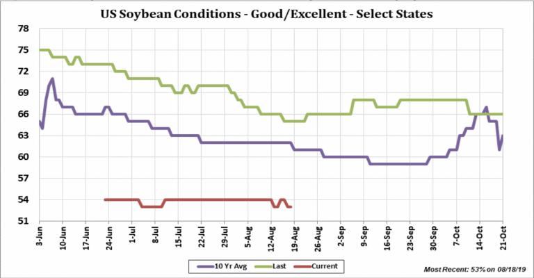 Soybean Futures Market
