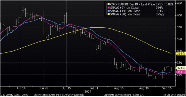 Corn Futures Market